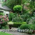 Озеленение сада - огненное дерево и шелковая мимоза - VIP-REMONT-KVARTIR.RU