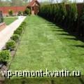 Рулонный газон - VIP-REMONT-KVARTIR.RU