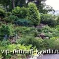 Создание альпийской горки своими руками - VIP-REMONT-KVARTIR.RU